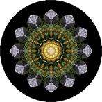 Mandala aus Steinen und bunten Blättern, Steinmandala, Blattmandala
