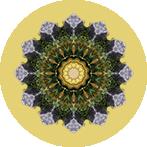 Mandala aus Steinen und bunten Blättern mit gelben Hintergrund, Steinblattmandala