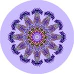 Mandala aus einer lila Lilie mit schwarzem Hintergrund, Lilienmandala