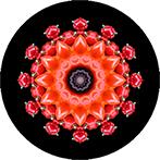 Mandala aus Paprika und Artischocken, Paprikamandala