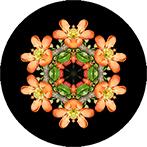 Mandala aus orasngem Hartriegelblüten, Hartriegelmandala