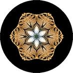Mandala aus einem Tigerfell, Tigermandala