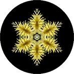 Mandala aus einer gelben Dahlie, Dahlienmandala