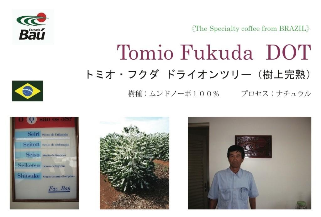 Tomio Fukuda DOT