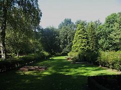 Grauschnäpper-Revier auf dem Nordfriedhof (Foto: Wolfgang Voigt)