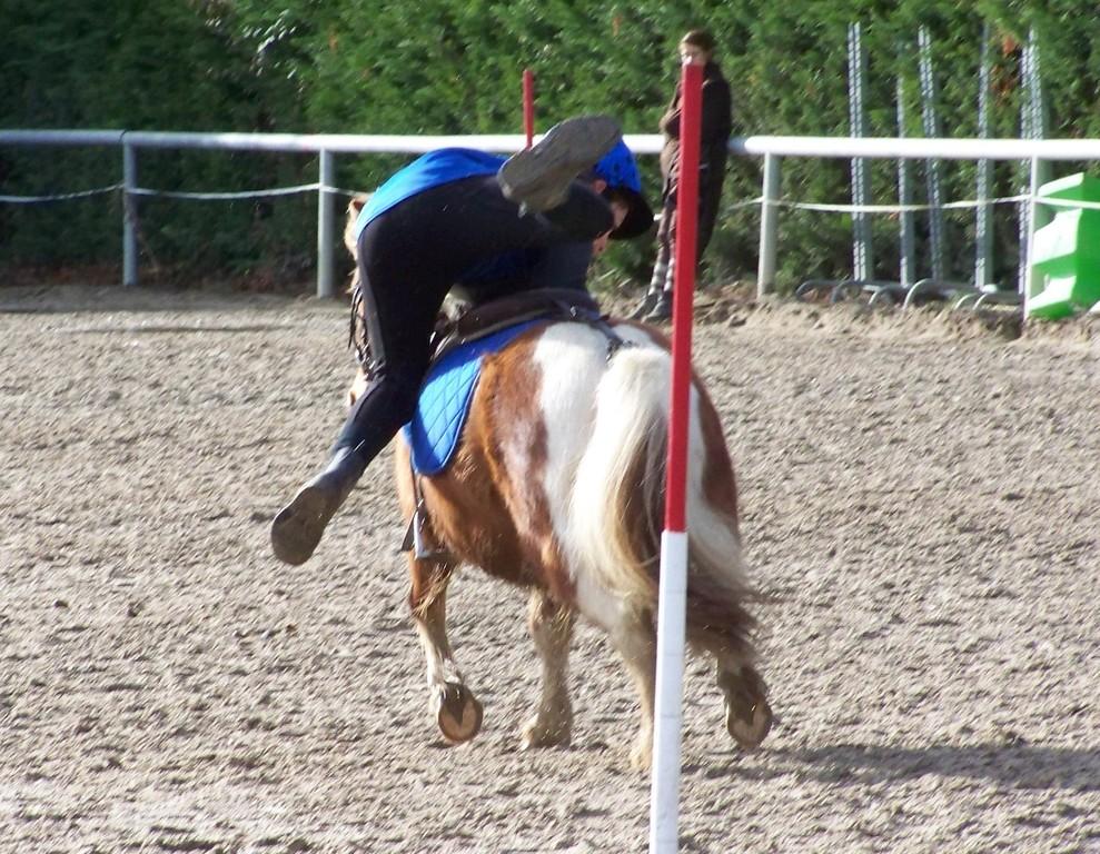 A pied à cheval_Morgan & Pipo