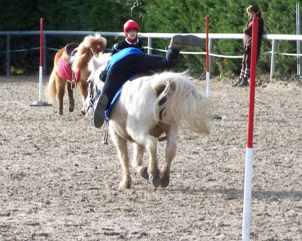 A pied à cheval_Valentine & Eclipse