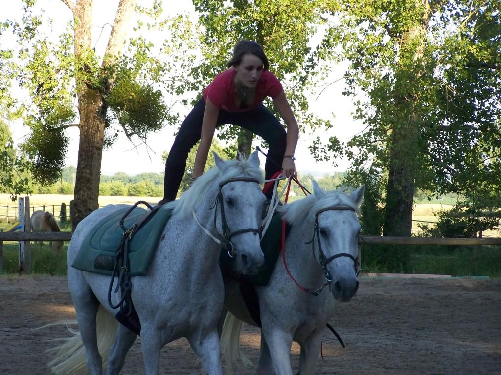 poste hongroise: Anne avec Baloo et Baghera