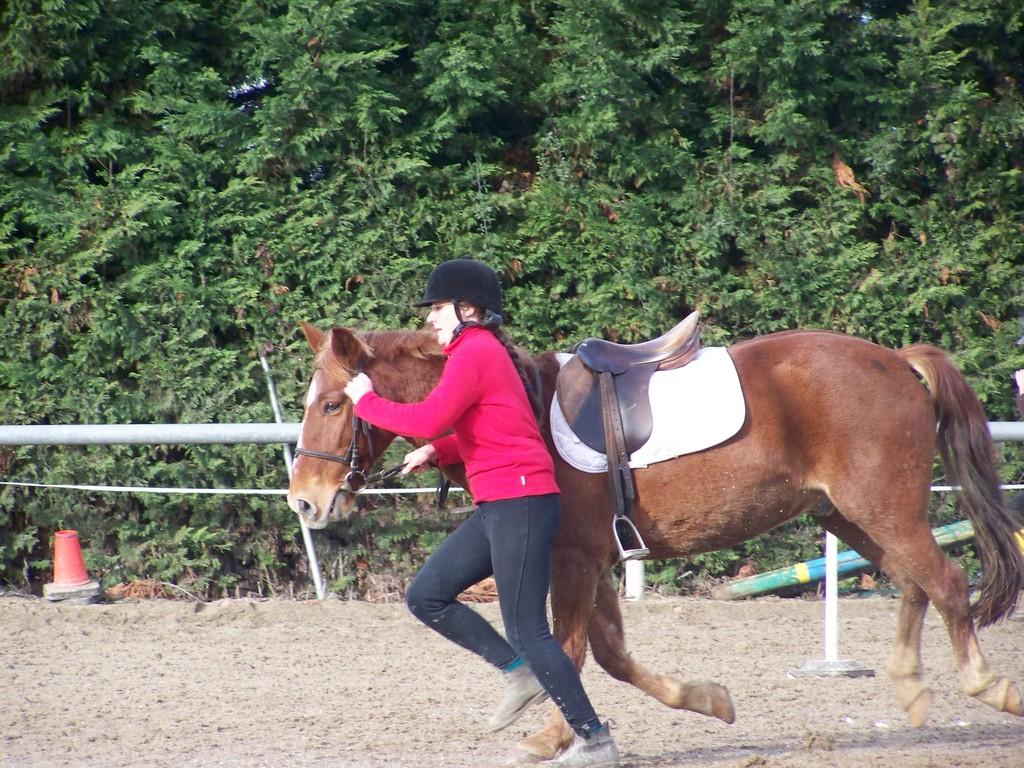 A pied à cheval_Amandine & Amar