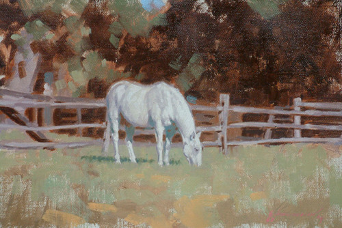 White horse- oil painting by Peter Schaumann