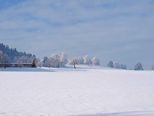 wintertag mit viel schnee und sonnenschein in st.johann aufer schwäbischen alb