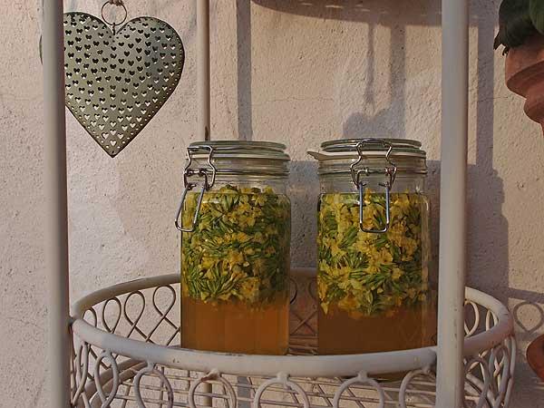 schlüsselblumenessig reift 4 bis 6 wochen in der sonne