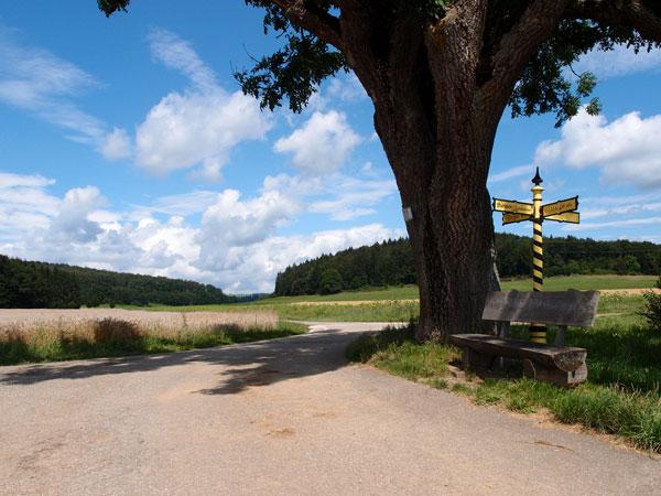 Gelb gestreifter Wegweiser an Kreuzung auf Radweg in St. Johann Schwäbische Alb