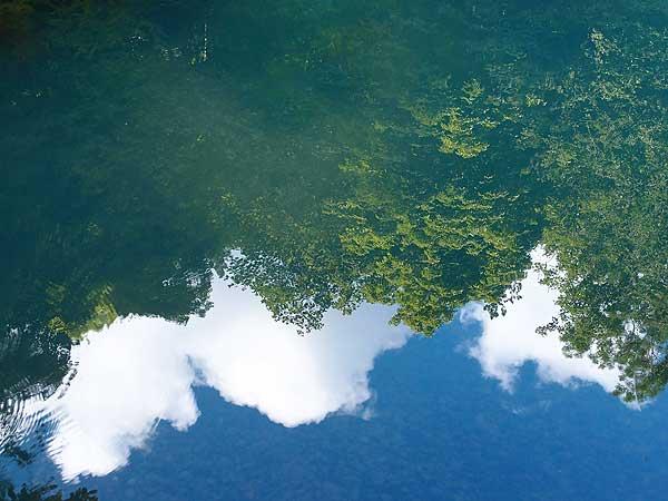 baum- und wolkenspiegelung im wasser des blautopfs in blaubeuren bei ulm