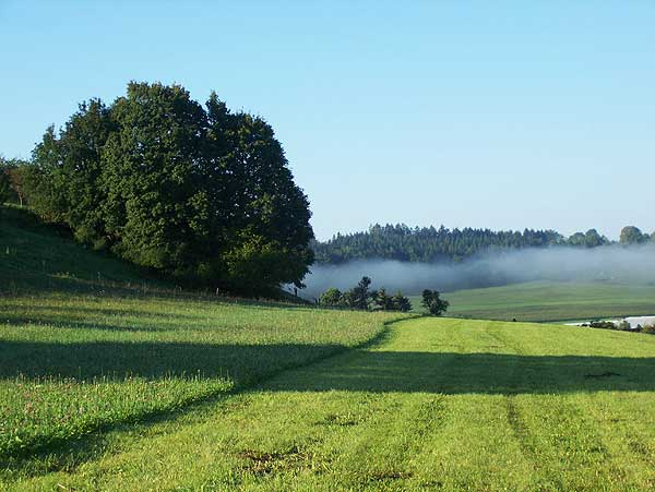 augustmorgen auf der schwäbischen alb wenn die morgennebel sich auflösen