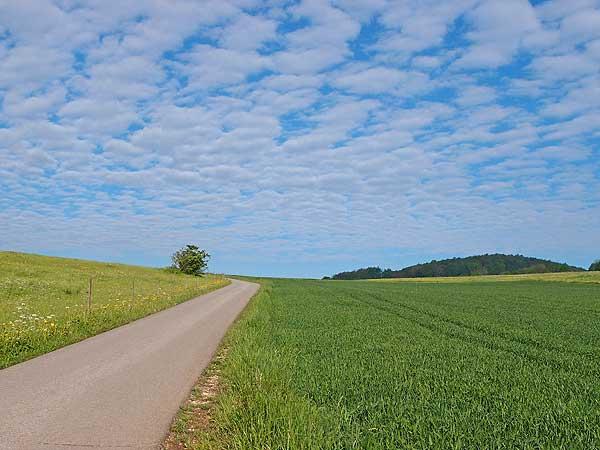 weg durch frühlingswiesen mit kleinen wolken