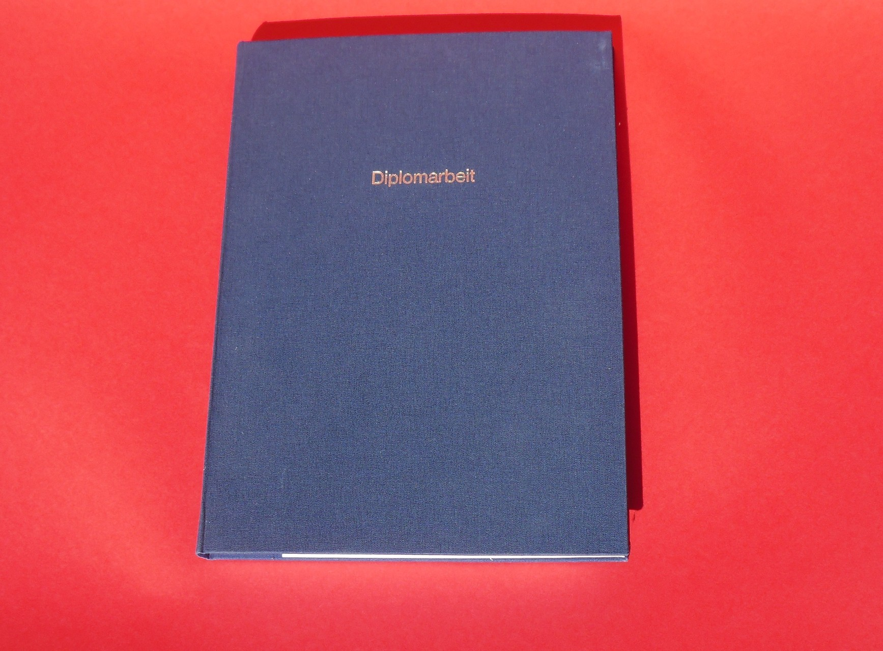 Diplomarbeit Cover