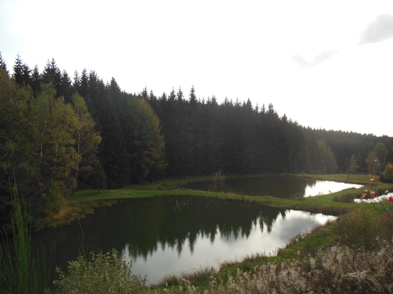 Vue du gîte sur étangs en automne