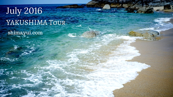 2016年7月屋久島ガイドツアー空き状況(もののけ姫の森、縄文杉、縄文杉1泊など)
