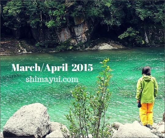 屋久島,3月,4月,ガイドツアー,縄文杉,白谷雲水峡,太鼓岩,桜,お花見