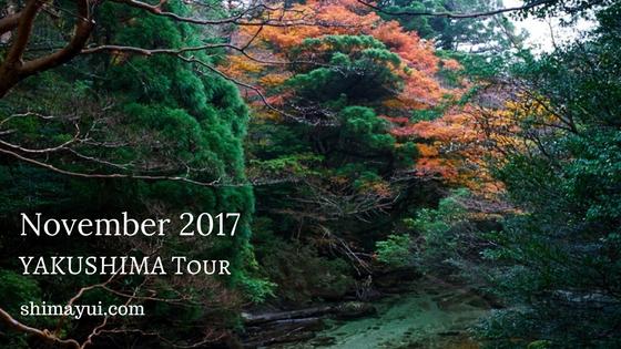 2017年11月の屋久島ガイドツアーの受付状況,縄文杉1泊ツアー,縄文杉日帰りツアー,白谷雲水峡
