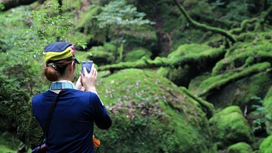 白谷雲水峡・もののけ姫の森にて。
