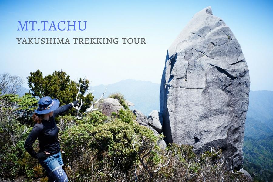 40メートルの巨岩を目指して(太忠岳ガイドツアーにて)