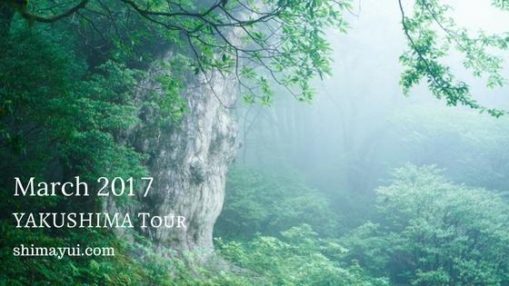 2017年3月の屋久島ガイドツアーの受付状況、春休みの屋久島