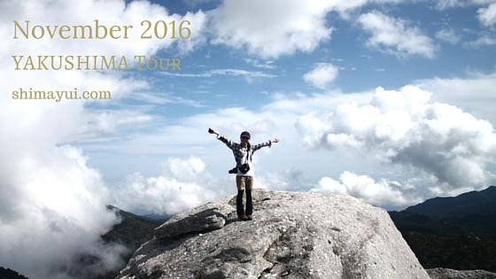 2016年11月屋久島ガイドツアー空き状況(もののけ姫の森、縄文杉、縄文杉1泊など)