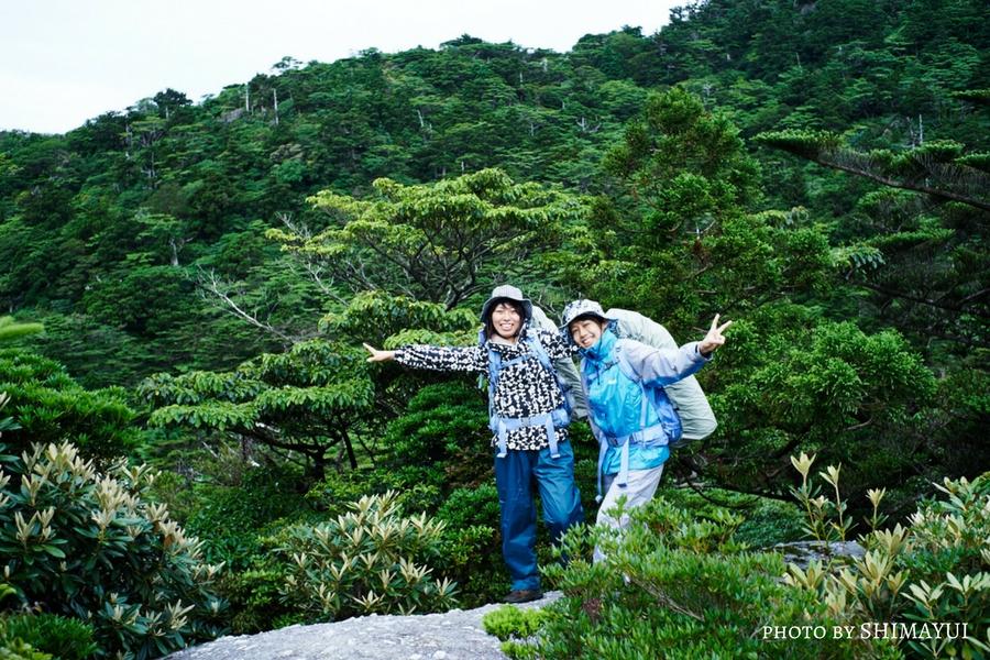 雨のあとの緑豊かな奥岳の森,黒味岳,ガイドツアー,屋久島,しゃくなげ,