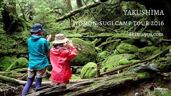 6月18日・19日【女性限定】縄文杉1泊ガイドツアー受付中!もののけの森と縄文杉を一度に!