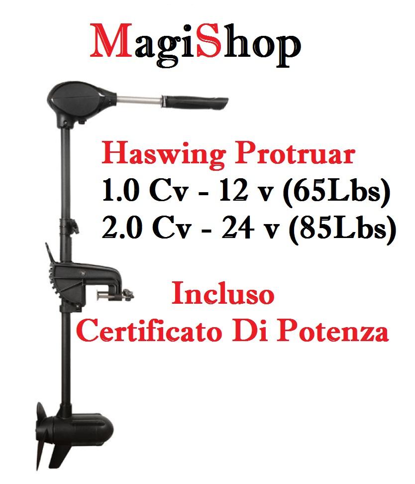 Haswing Protruar 1.0 Cv - 12 v (65Lbs)   2.0 Cv - 24 v (85Lbs)