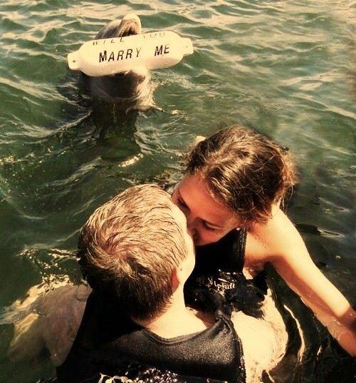 Demande en mariage faite par un dauphin!!! Magnifique! Source Pinterest