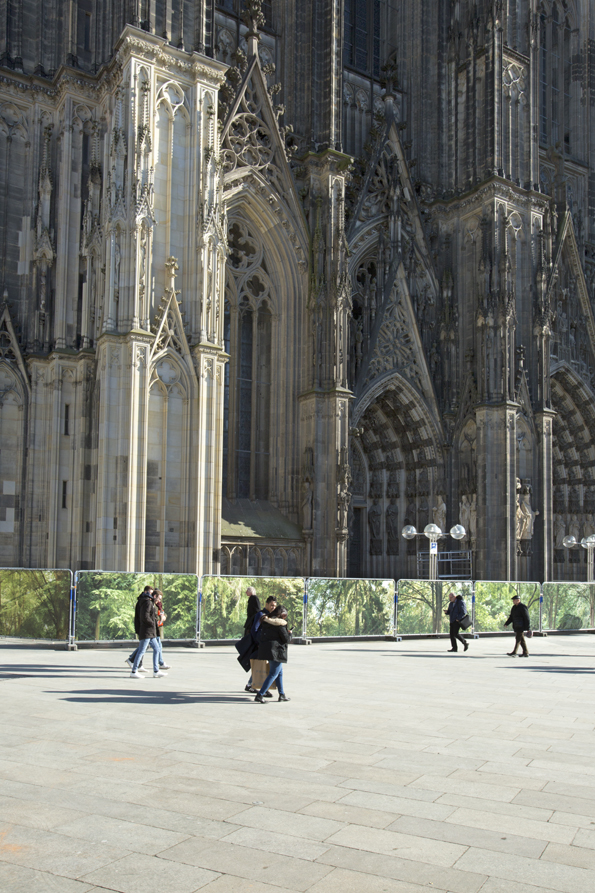 """Embassy of Trees"" vor dem Kölner Dom, Ellen Bornkessel"