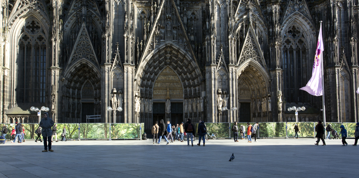 """Embassy of Trees"" vor dem Kölner Dom,Ellen Bornkessel"