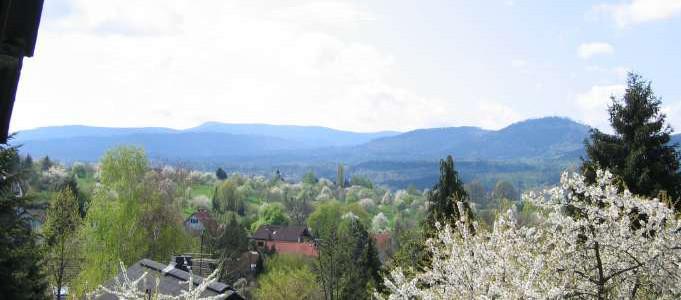 Balkonblick in den Schwarzwald mit Naturpark