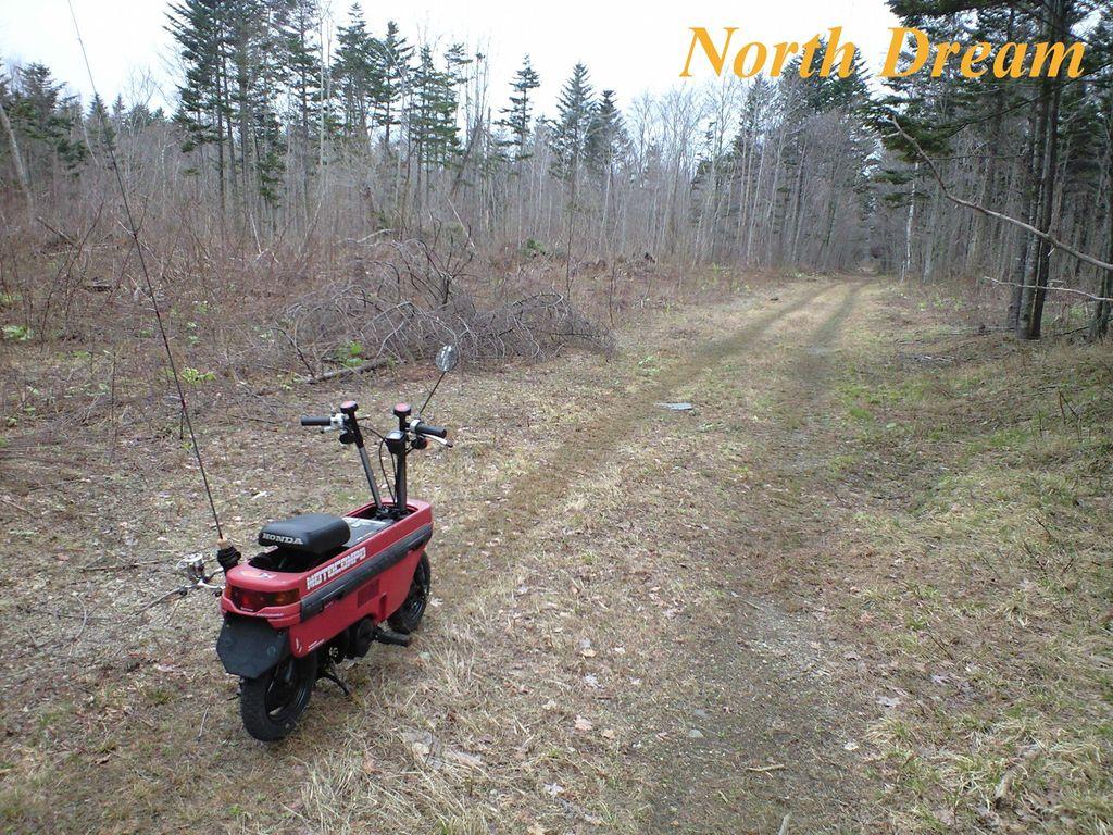 林道とモトコンポ