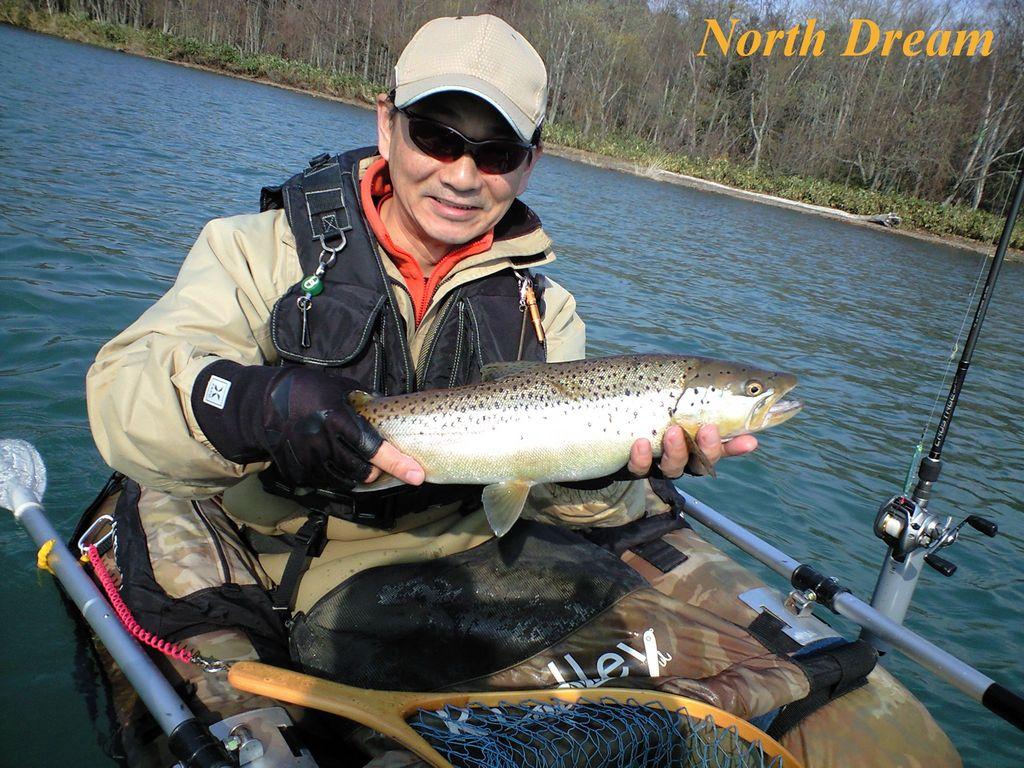 虎キチ釣り師さん ブラウン50クラス