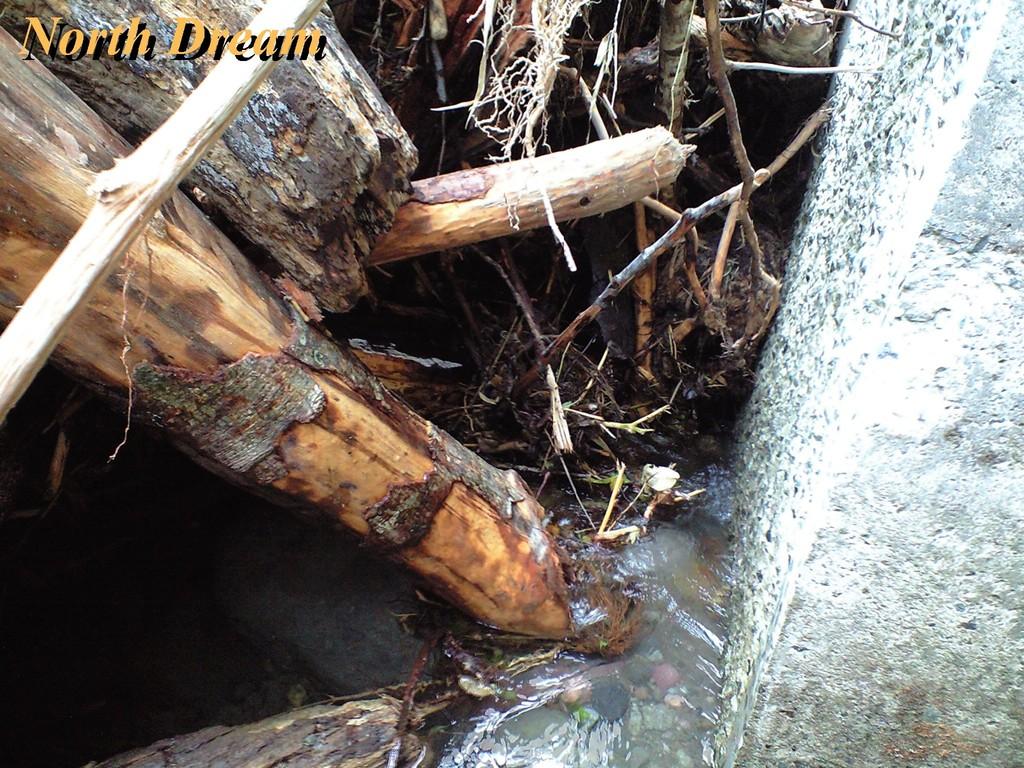 魚道2 流木を取れる範囲で取り除いた