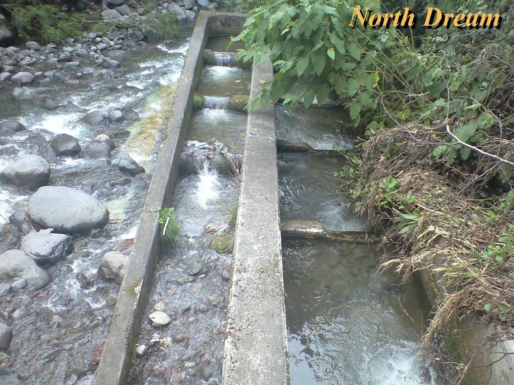 魚道2 その後、なんとか水は流れた