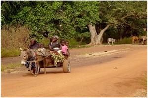 Culture de datation ouest-africaine