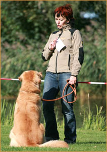 Wichtige Mensch-Hund-Gespräche