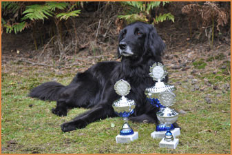 Haley mit ihren Pokalen