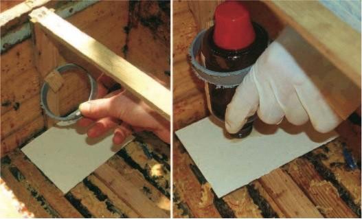 Ameisensäurebehandlung mit Medizinflasche