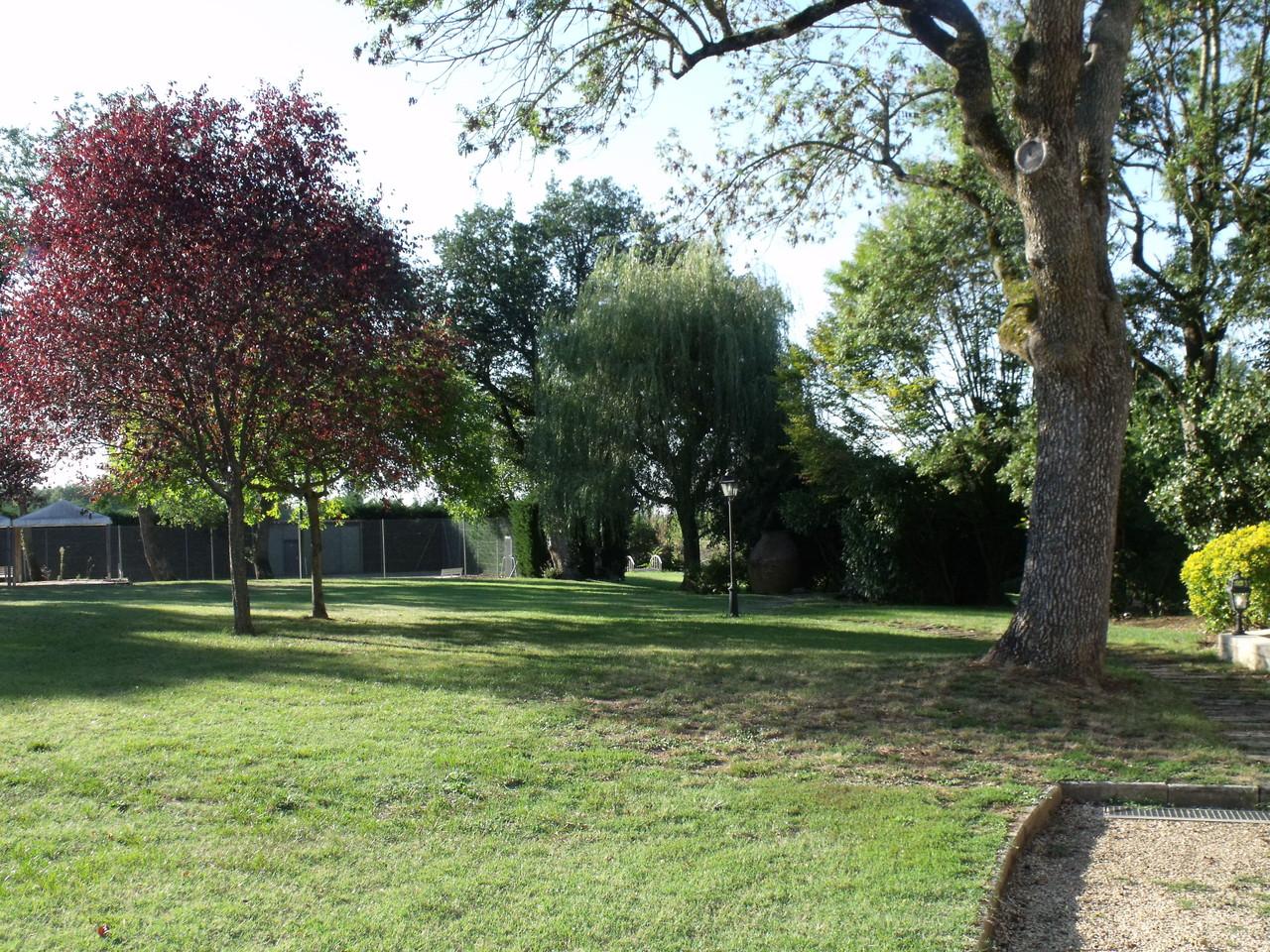 Vue parc depuis terrasse maison