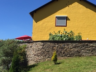 Sonnenblumen vor unserem Haus