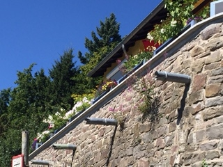 Blumenkästen auf unserer Terrasse