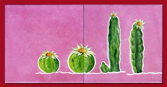 Cactus sur framboise