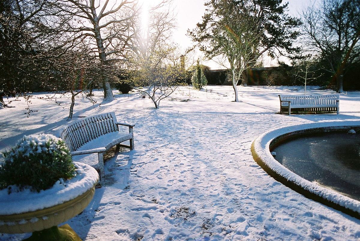 Gartenarbeiten im Januar
