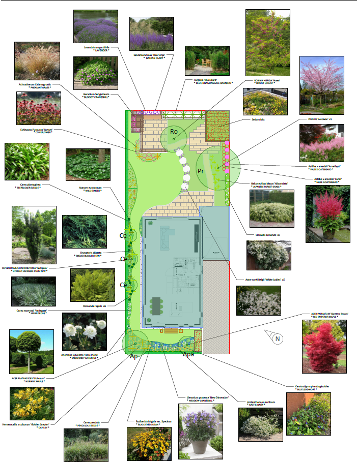 Gartenarbeiten im April - Pflanzplanung leicht gemacht